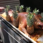 luau roast - pig with pineapples